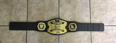 WWE TAG TEAM CHAMPIONS Belt. This one you carry over your shoulder and don t put on your waist. 39 long. Great condition!