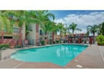 Accolade Apartment Homes - 1 BR 1 BA