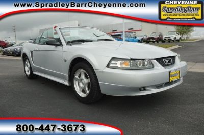 2004 Ford Mustang Deluxe (Silver Metallic)