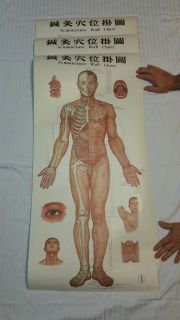Vintage ACCUPUNCTURE Charts and Needles