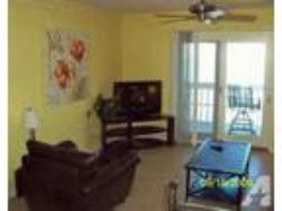 $119 / 2 BR - 575/wk~LUXURY WATERFRONT CONDO~BOAT SLIP~ INTERN