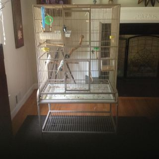 Large bird cage with 3 one year old parakeets See attached pictures of birds