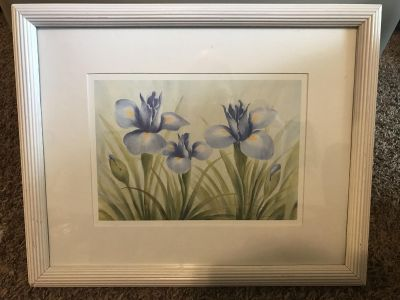 Iris Picture (frame could use a touch up)