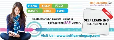 Deal OF The DAY  – SELF LEARNING SAP Center SAP All Videos Are Available in SELF LEARNING SAP.