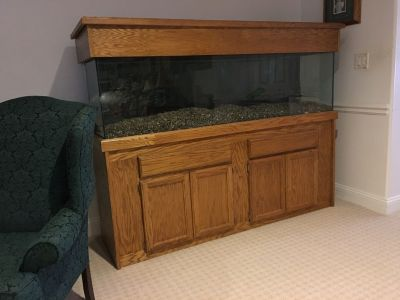 fish tank 120 gallons