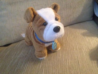 American girl doll Dog: Meatloaf with collar