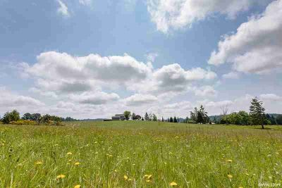 40864 Lacomb Dr LEBANON, Accepted Offer with Contingencies.