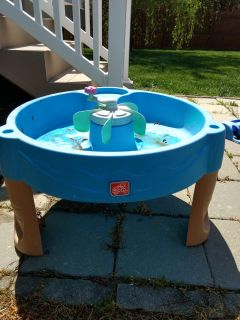 Step 2 water table