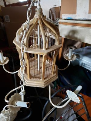 Bird cage hanging light