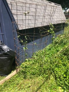 FREE! Large wire gardening cages-QTY 5
