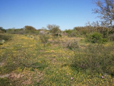 - $54900 10.43 Hill Country Acres. Owner Terms Only $1000 down (Hill Country)