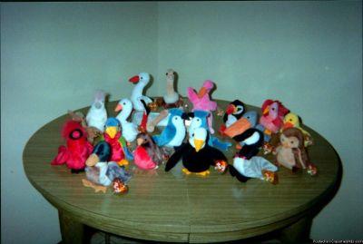 Beanie Baby Birds