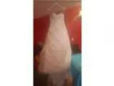 Abbie wedding dress