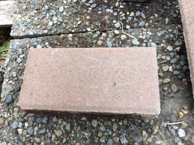 Red Brick Pavers- .50 each