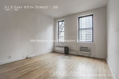 Massive Renovated One Bedroom! Lots of Light and Closet Space!