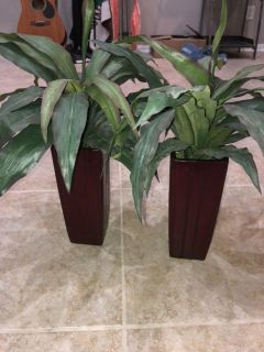 Artificial Plants with wood vase