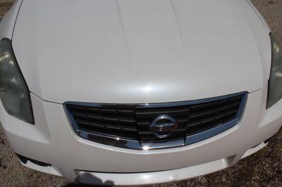 2008 Nissan Maxima 3.5 SL (White)