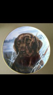 """Collector Plate - Limited Edition - """"Afternoon Watch"""" - The Franklin Mint"""