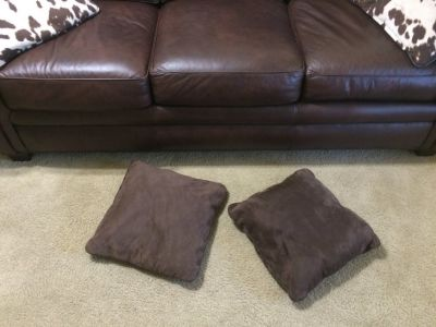 (2) Brown Throw Pillows
