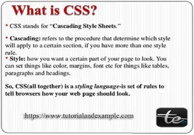 Learn to style CSS Beginner Interview Questions-Tutorials
