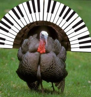 Thanksgiving in Moline, IL - Please Don't Forget to Get Your Piano Tuned!