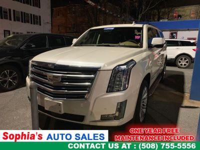 2015 Cadillac Escalade ESV 4WD 4dr Platinum (White Diamond Tricoat)