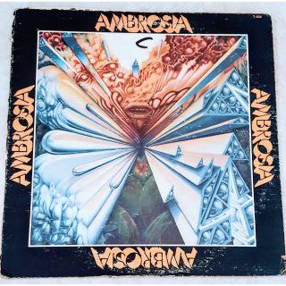 Ambrosia Vinyl Album