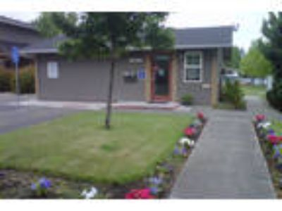 Pine Tree - 2 BR Two BA
