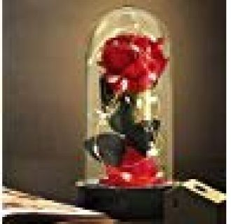 Beauty and The Beast Rose,Enchanted Red Silk Rose Lamp