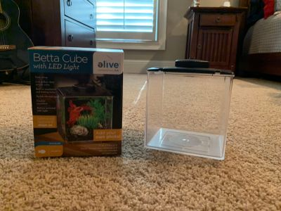 Beta fish lighted cube, EUC