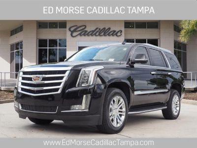2016 Cadillac Escalade Base (Black Raven)