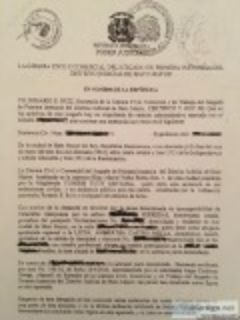 USCIS CERTIFIED DOMINICAN DIVORCE DECREE TRANSLATIONS