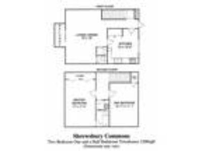 Shrewsbury Commons - Townhouse