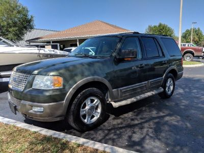 2004 Ford Expedition Eddie Bauer (Green (Light))