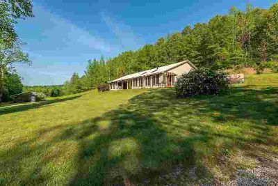 198 Moore Rd Iron City, Custom lodge home surrounded by