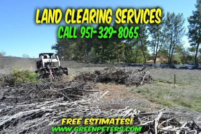 Land Clearing & Brush Removal Services. Free Quote