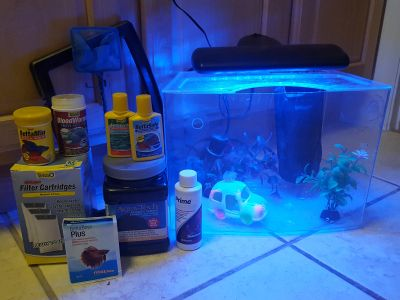10-gallon fish aquarium with accessories and more.