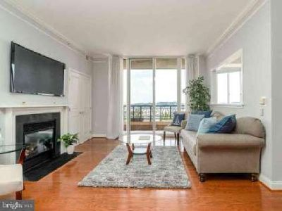 717 President St #403 Baltimore, Elegant Condo With Stunning