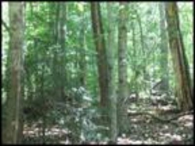 Real Estate For Sale - Land 100 x 127 Irr