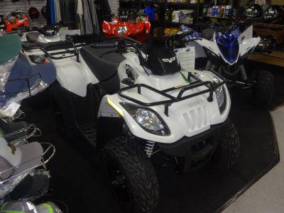 2018 Textron Off Road Alterra 150 Kids ATVs Zulu, IN