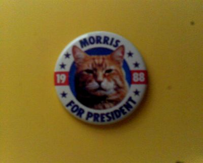 REDUCED! Morris the Cat for President Pin 1988 and Paw-licies