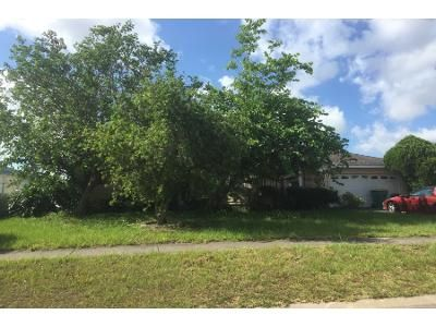 3 Bed 2 Bath Preforeclosure Property in Kissimmee, FL 34743 - Palmwood Ct