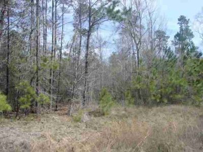 19100 Lincoln New Caney, 24 unrestricted acres behind Tavola