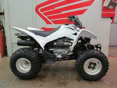 2017 Honda TRX250X Sport ATVs Crystal Lake, IL