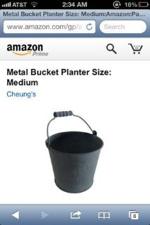 Metal bucket- medium size  (Lafayette)