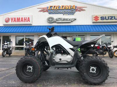 2019 Yamaha Raptor 90 Sport ATVs Coloma, MI
