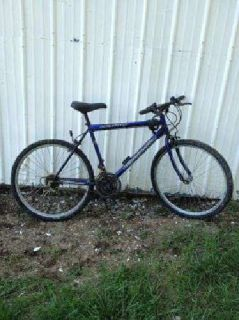 $10 Bicycle (Winchester)