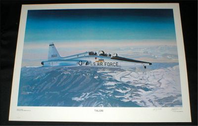 "Aviation Art Print - ""TALON"" - U.S. Air Force - Signed & Numbered by Hal McCormick"