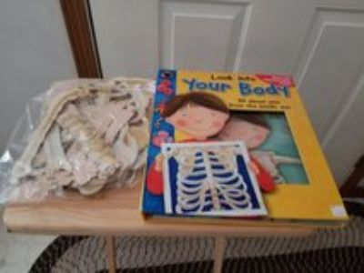 Skeleton book and floor puzzle