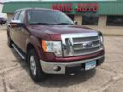 used 2010 Ford F-150 for sale.